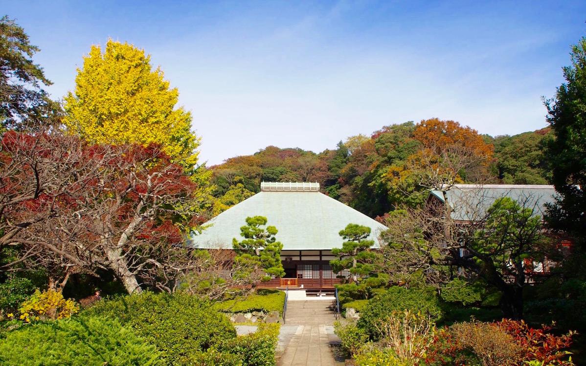 浄妙寺-紅葉